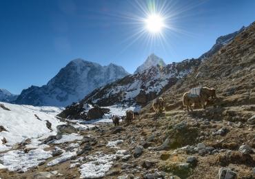 Budget Everest Base Camp Trek Package
