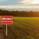 Land sale in Budanilkantha